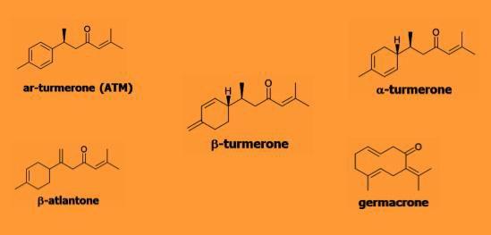 turmerone